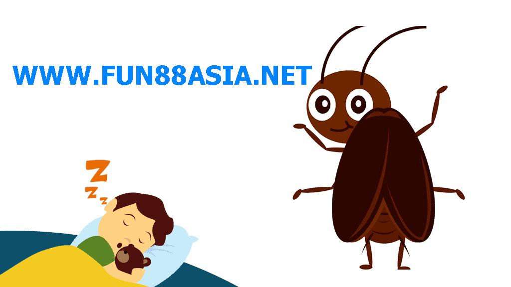 ฝันเห็นแมลงสาบหลายตัว เลขเด็ด
